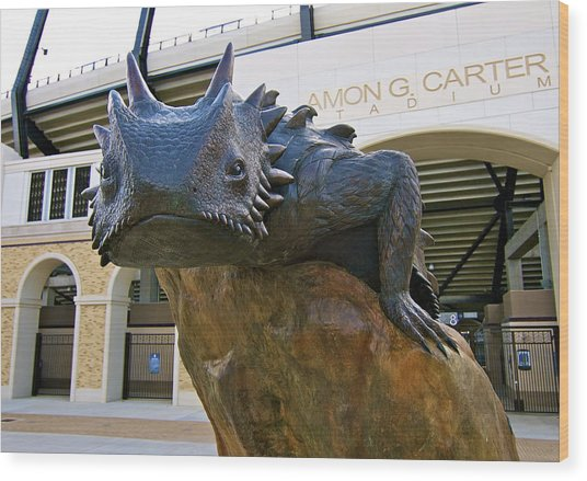 Tcu Horned Frogs..fear The Frog Wood Print