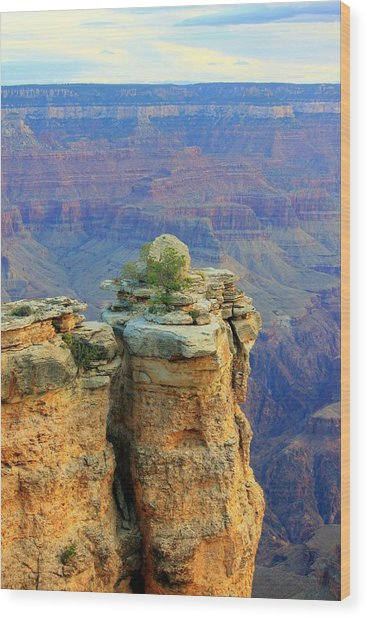 The Canyon Balanced Rock Wood Print by Douglas Miller