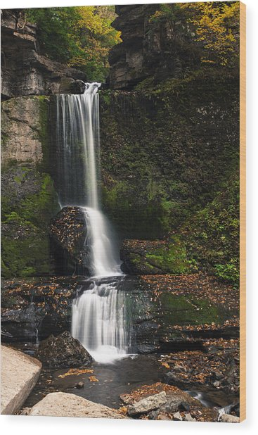The Cowshed Falls Wood Print