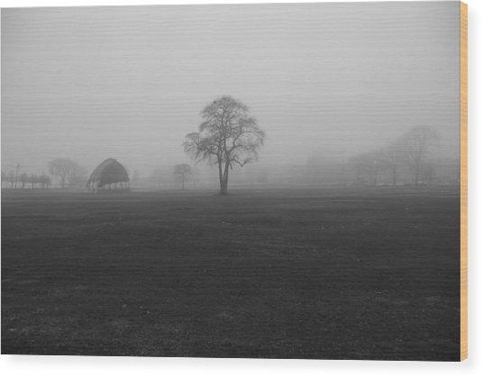 The Fog Tree Wood Print