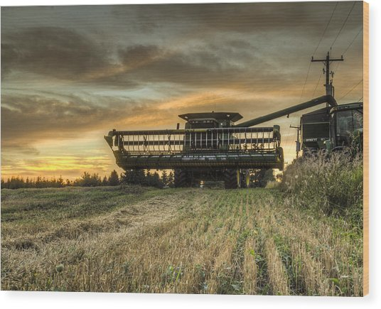 The Harvest Time Wood Print