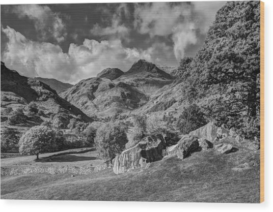 The Langdale Pikes From Copt Howe Wood Print by Graham Moore