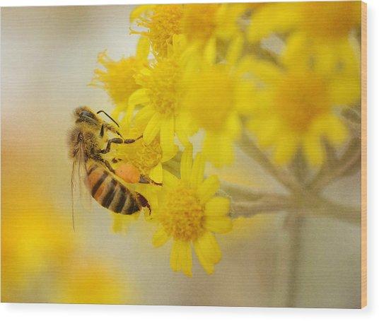 The Pollinator 2 Wood Print