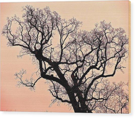 The Tree On Hobson Avenue Wood Print
