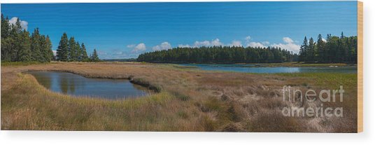 Thompson Island In Maine Panorama Wood Print