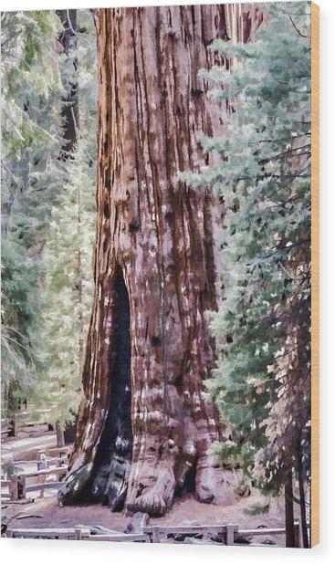 Tree Trunk Wood Print