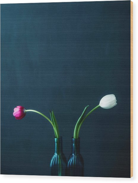 Tulip Still Life For Mothers Day Wood Print