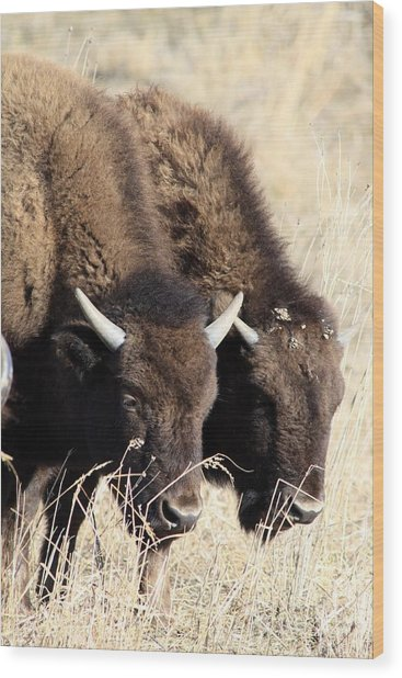 Twins Wood Print by Rick Rauzi