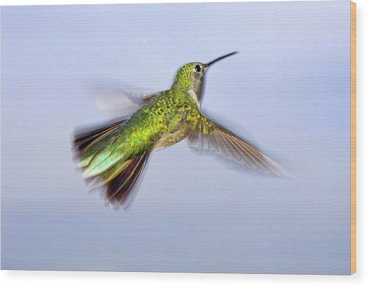 Usa, Colorado, Summit County, Heeney Wood Print by Jaynes Gallery