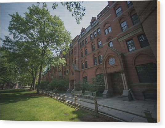 Views Of Yale University As Ivy League Pay Soars Wood Print by Bloomberg