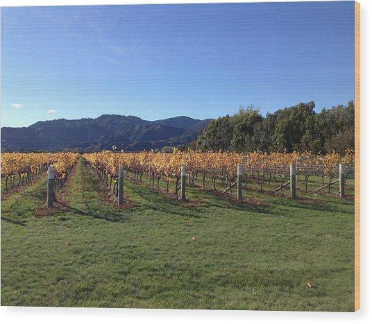 Vineyard Wood Print by Ron Torborg