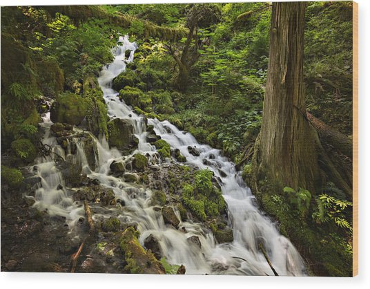 Wahkeena Creek Wood Print