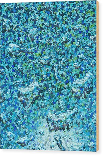 Water Drops Colorful Abstract Background  Wood Print by Odon Czintos