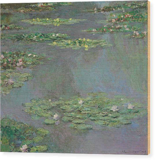 Water Lilies   Nympheas Wood Print