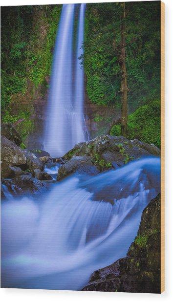 Waterfall - Bali Wood Print