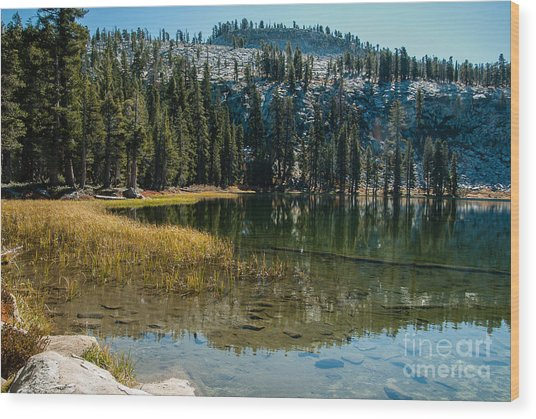 Weaver Lake- 1-7686 Wood Print