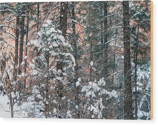 West Fork Snow Wood Print
