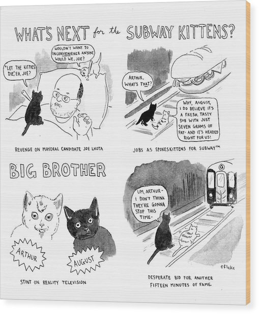 What's Next For The Subway Kittens Wood Print