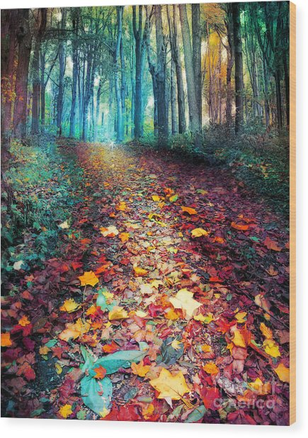 Where Leaves Gather Wood Print