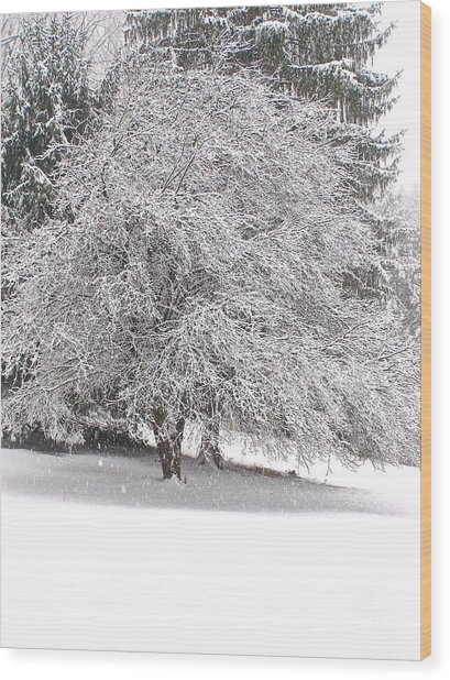 White As Snow Wood Print