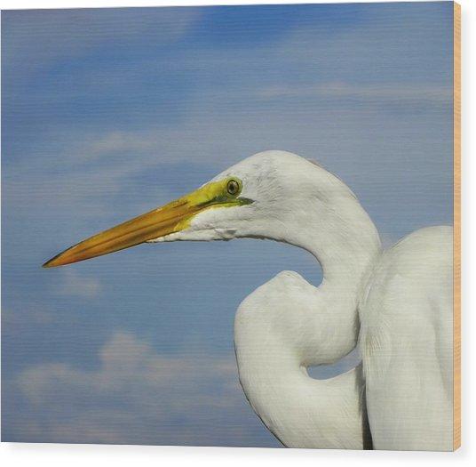 White Egret Wood Print by Carolyn Bistline