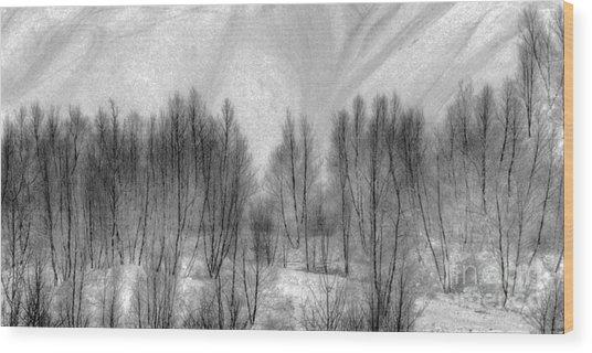 Boney Piles Wood Print