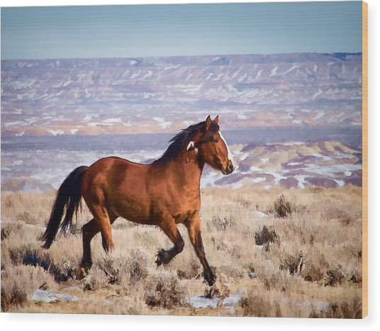 Eagle - Wild Horse Stallion Wood Print