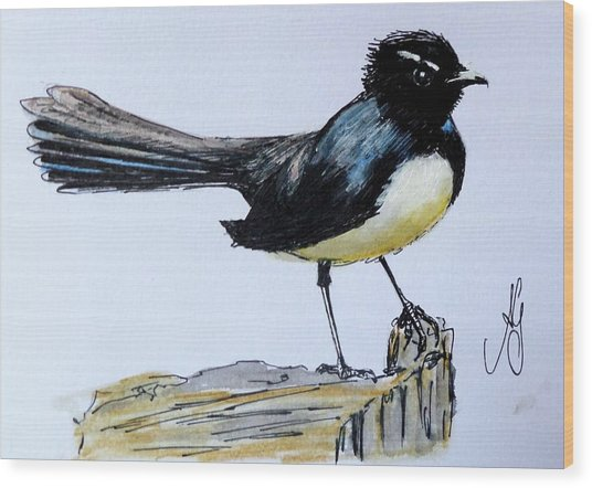 Willy Wagtail Wood Print