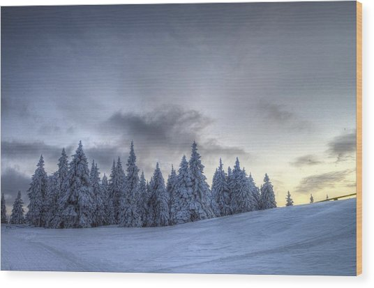 Winter Wood Print