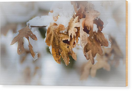 Winter Leaves Wood Print