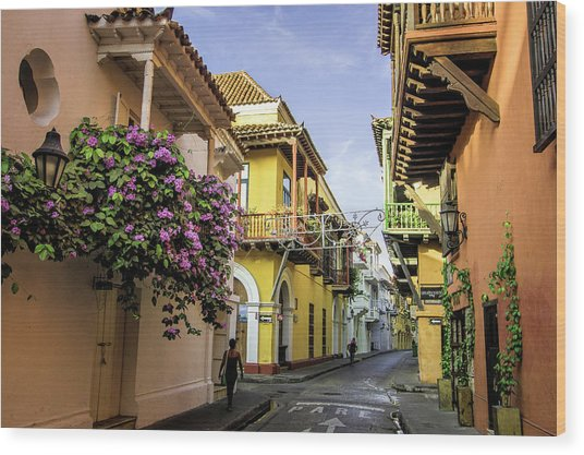 Wonderful Spanish Colonial Architecture Wood Print by Jerry Ginsberg