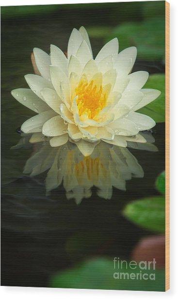 Yellow Lotus Wood Print
