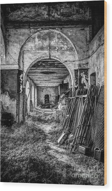 Abandoned Villa Wood Print