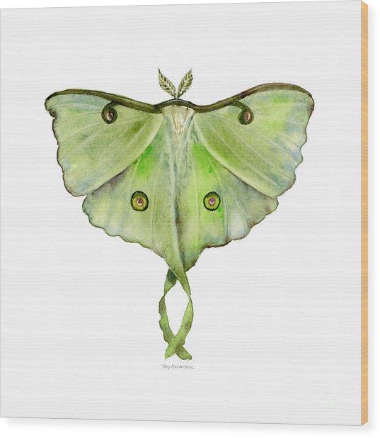 100 Luna Moth Wood Print