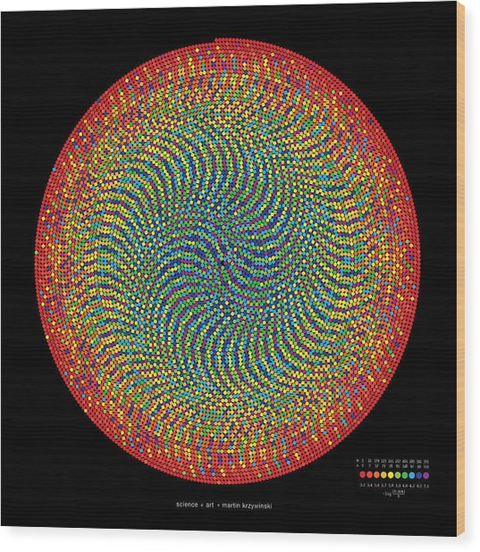 10000 Approximations Of Pi Wood Print by Martin Krzywinski