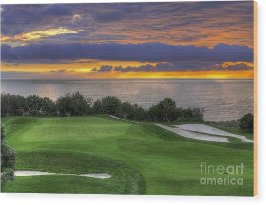11th Green - Trump National Golf Course Wood Print