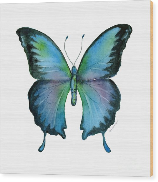 12 Blue Emperor Butterfly Wood Print