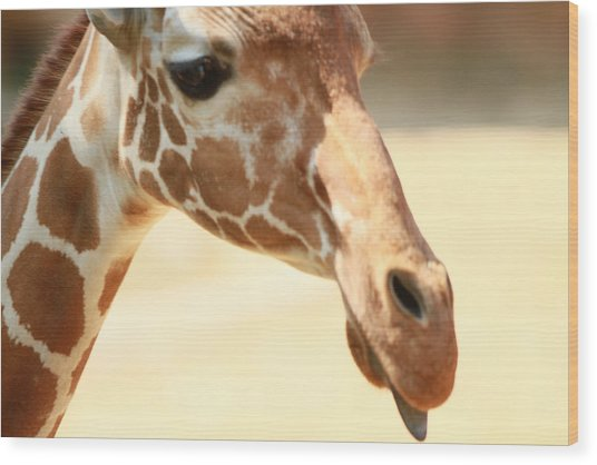 Giraff Wood Print by Tinjoe Mbugus