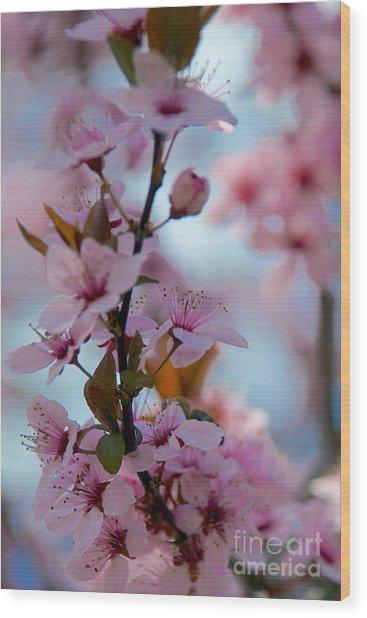 Plum Tree Flowers Wood Print