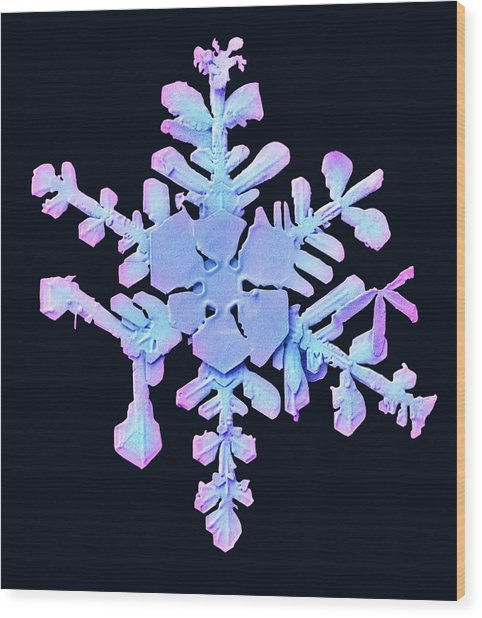 Snowflake Wood Print by Ars/us Dept Of Agriculture