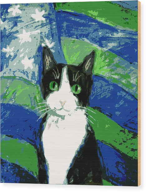 Cat With Stars And Stripes Wood Print