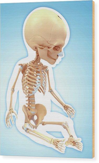 Baby's Skeletal System Wood Print by Pixologicstudio