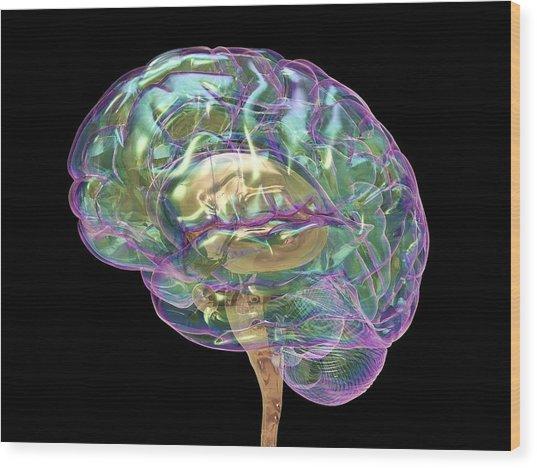 Human Brain Wood Print