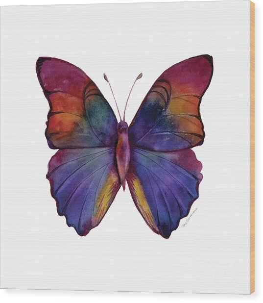 13 Narcissus Butterfly Wood Print