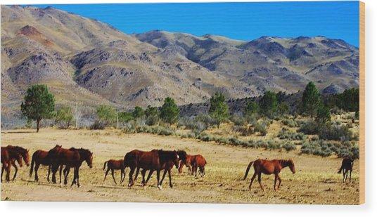 130 Wood Print by Wynema Ranch
