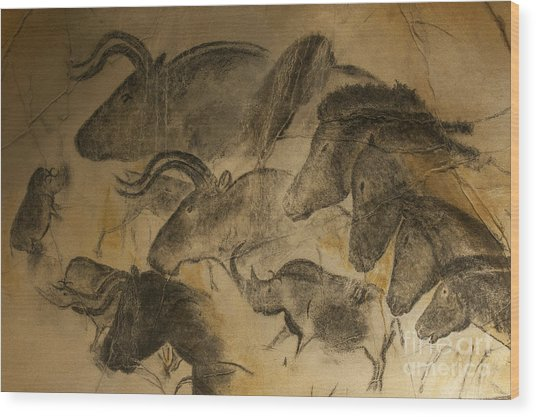 131018p051 Wood Print