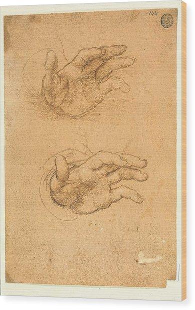 Italy, Veneto, Venice, Accademia Art Wood Print by Everett