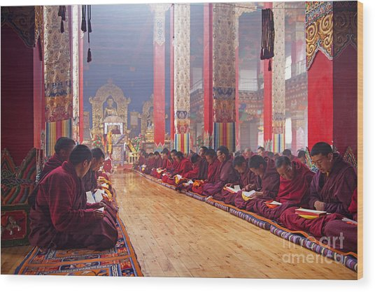 141220p194 Wood Print