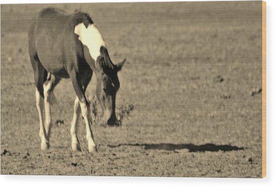 142 Wood Print by Wynema Ranch