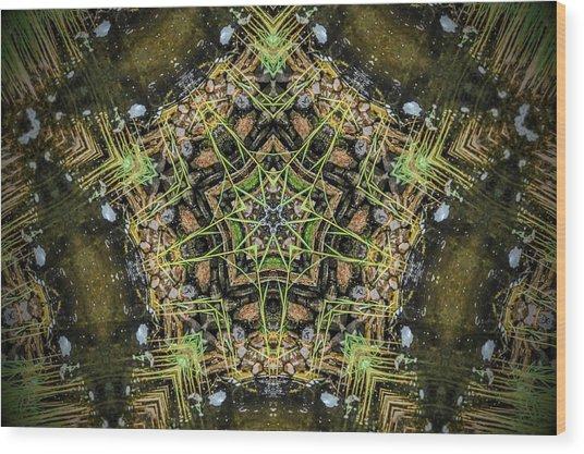 Kaleidoscope Wood Print by Joe Oliver